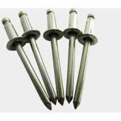1/8D 1/2 Grip 18-8 Stainless Steel Rivet Pkg Of 10