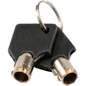 Global Industrial™ Replacement Keys (2) for Inter Office Mailboxes (443490 & 443491)