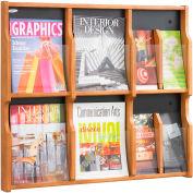 Expose 6 Magazine 12 Pamphlet Display - Medium Oak/Black