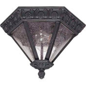 "Nuvo 60/2037 Cortland-2 Light Ceiling-Flush Dome, Seeded Mist, Satin Iron Ore, 13""W X 8.75""H"