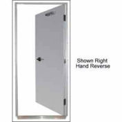 """Securall® 16G 36""""W x 80""""H 1.5 Hour Fire Rated Quick-Mount Door LH Reverse"""
