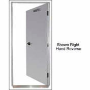 """Securall® 16G 36""""W x 84""""H 1.5 Hour Fire Rated Quick-Mount Door LH Reverse"""