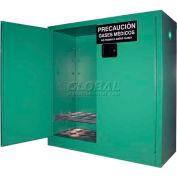 "Securall® 24, D & E Cylinder, Vertical Medical Gas Cabinet, 43""W x 18""D x 44""H"