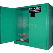"Securall® 24, D & E Cylinder, Vertical Medical Fire Lined Gas Cabinet, 43""W x 18""D x 44""H"