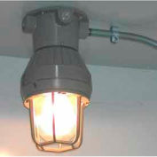 Securall® Explosion-Proof Light w/Switch Interior for Hazmat Buildings