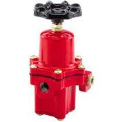 "Gas Regulator High Pressure Type 67 750,000 BTU 1/4"" Fnpt"