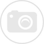 SFV_MSD-4076521_main