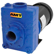"AMT 2764-95 2"" Cast Iron Self-Priming Centrifugal Pump, 150gpm, 75psi, Buna-N Seal, 1-1/2hp"