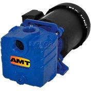 "AMT 285F-95 1-1/4"" Self-Priming Centrifugal Pump, Cast Iron, Buna-N Seal, 3/4hp TEFC, 1 Phase Motor"