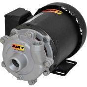 "AMT 369F-95 1-1/4"" x 1"" Cast Iron Straight Centrifugal Pump, Buna-N Seal, 1hp 3 Phase Motor"