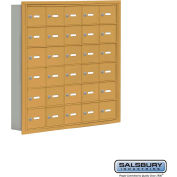 "Cell Phone Storage Locker, Recessed Mounted, 6 Door High, 5""D, Keyed Locks, 30 A Doors, Gold"