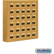 "Cell Phone Storage Locker, Surface Mounted, 6 Door High, 5""D, Combo Locks, 30 A Doors, Gold"