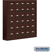 "Cell Phone Storage Locker, Surface Mounted, 6 Door High, 5""D, Combo Locks, 30 A Doors, Bronze"