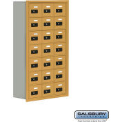 "Cell Phone Storage Locker, Recessed Mounted, 7 Door High, 8""D, Combo Locks, 21 A Doors, Gold"