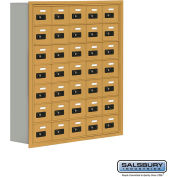 "Cell Phone Storage Locker, Recessed Mounted, 7 Door High, 8""D, Combo Locks, 35 A Doors, Gold"