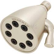 Speakman Anystream® Icon 8-Jet Shower Head, Brushed Nickel Finish, 2.5 GPM