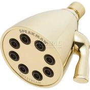 Speakman Anystream® Icon 8-Jet Shower Head, Polished Brass Finish, 2.5 GPM