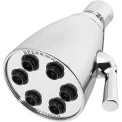 Speakman Anystream® Icon 6-Jet Shower Head, Polished Chrome Finish, 2.5 GPM