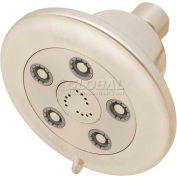 Speakman Anystream® Alexandria Wall Mount Shower Head, Brushed Nickel Finish, 2 GPM