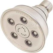 Speakman Anystream® 3-3/4 Dia. Caspian Wall Mount Shower Head, Brushed Nickel Finish, 2 GPM