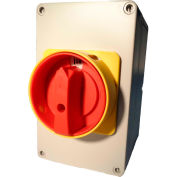 Springer Controls / MERZ ML2-063-AR3E, 63A, 3-Pole, Enclosed Disconnect Switch, Red/Yellow