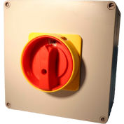 Springer Controls / MERZ ML2-080-AR3E, 80A, 3-Pole, Enclosed Disconnect Switch, Red/Yellow