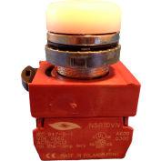 Springer Controls N5CLBD-120, Pilot Light - White - 120V Bulb with Power Supply AC/DC