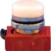 Springer Controls N5CLBD, Pilot Light - White