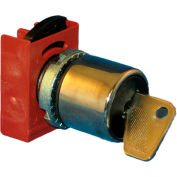 Springer Controls N5CSCE0T95, 22mm, 3-Position Key Selector , 1-0-2, KEY REMOVAL: 1,0,2