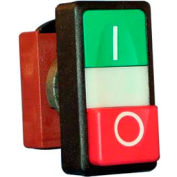 Springer Controls N5DPLVRS01, Double Push Button with I/O Symbols - with contacts