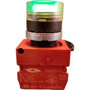 Springer Controls N5XPLAGD10-120, Illuminated Push Button, Momentary, Flush (120V 1N.O) - Amber - Pkg Qty 2
