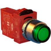Springer Controls N5XPLRSDTY, Press-To-Test Pilot Light Red, AC, 480-500V Transformer