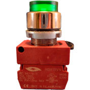 Springer Controls N5XPLVSD, Illuminated Push Button, Momentary, Extended - Green