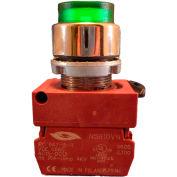 Springer Controls N5XPLVSD, Illuminated Push Button, Momentary, Extended - Green