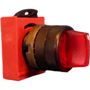 Springer Controls N5XSLD0R, 2-Position Illuminated Selector, RED