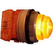 Springer Controls N7LNGR-240, 30mm Pilot Light - 240V Bulb, with Power Supply AC/DC - Yellow