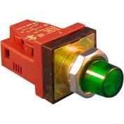 Item # N7PLSGRN10, N7 (30 mm) Illuminated Standard Push Buttons - Momentary Operation