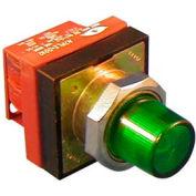 Item # N7PLSLDL10, N7 (30 mm) Illuminated Standard Push Buttons - Momentary Operation