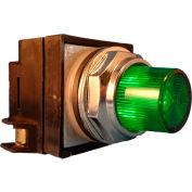 Springer Controls N7PLSVT10-240, 30mm Illum. Push-Button, Extended, Momentary, 240V, 1 N.O., Green