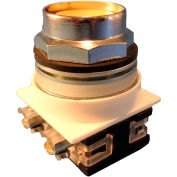 Springer Controls N7PNEG10, 30 mm Recessed Push Button, 1 Normally Open, Momentary, Yellow