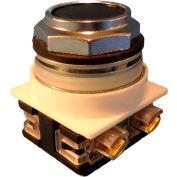 Springer Controls N7PNGN10, 30 mm Flush Push Button, 1 Normally Open, Momentary, Black