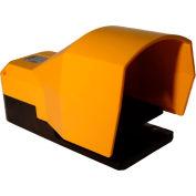 Tecno Elettrica Ravasi (T.E.R.), PF54612100 Foot-Switch, Standard Thermoplastic Cover, 2 N.O.+2 N.C.