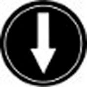 T.E.R., PRTA006MPI Single Arrow Black Button Insert, Use w/ MIKE & VICTOR Pendants