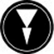 T.E.R., PRTA012MPI Two Speed Arrow Black Button Insert, Use w/ MIKE & VICTOR Pendants
