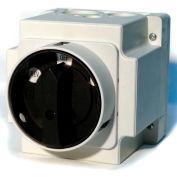 Springer Controls/MERZ W151/3-I2-DA,20A,3-POLE,Encl. Reversing Switch,Maintained Lockable Handle