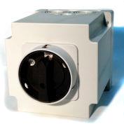 Springer Controls/MERZ W451/7-I3-DA,40A,3-POLE,Encl. Reversing Switch,Spring-Return Lockable Handle