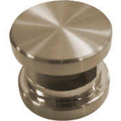 SteamSpa G-SHBN Steamhead w/Aroma Therapy Reservoir, Brushed Nickel