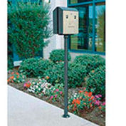 """Surface Mount Pole For Smokers Station, Black, 2""""Dia x 51""""H"""