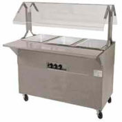 """Portable Buffet Table, Electric, (2) 12"""" x 20"""" S/S Wells, 120V, Solid Base"""