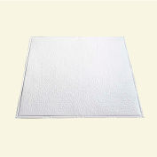 Great Lakes Tin Chicago 2' X 2' Nail-Up Tin Ceiling Tile in Matte White - T60-01